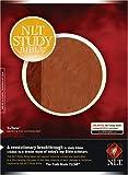 New Living Translation 2.0 - NLTse - NLT Study Bible, Indexed: Imitation Leather - Brown/Tan (Imitation Leather)