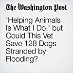 'Helping Animals Is What I Do.' but Could This Vet Save 128 Dogs Stranded by Flooding? | Abigail Hauslohner