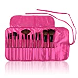 SHANY Cosmetics Professional 12-Piece Natural Goat and Badger Cosmetic Brush Set with Pouch Hot Pink