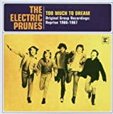 Too Much to Dream - Original Group Recordings: Reprise 1966-1967