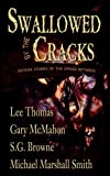 Swallowed By The Cracks (0977968669) by Lee Thomas