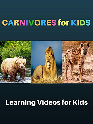Carnivores for Kids: Learning Videos for Kids