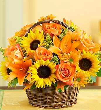 1800Flowers - Fields of Europe for Fall Basket - Large