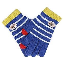 Damara Women's Durable Touch Screen Stripe Knit Wool Gloves,Blue