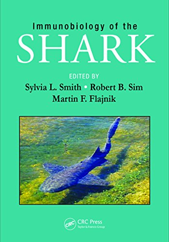 immunobiology-of-the-shark