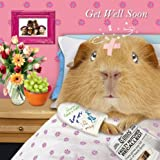 Feel Better Soon Guinea Pig Card