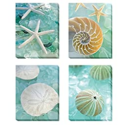 Seaglass I, II, III, & IV by Alan Blaustein 4-pc Premium Gallery-Wrapped Canvas Giclee Art Set (Ready-to-Hang)