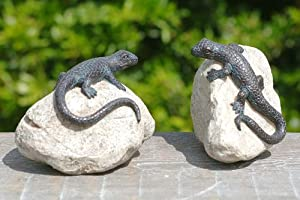 gecko 2tlg eidechse auf stein haus amp garten figuren. Black Bedroom Furniture Sets. Home Design Ideas