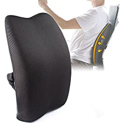 Memory Foam Ergonomic Lumbar Back Support Cushion Pillow for Lower Back Pain,Perfect for Office Home Car Seat Chair