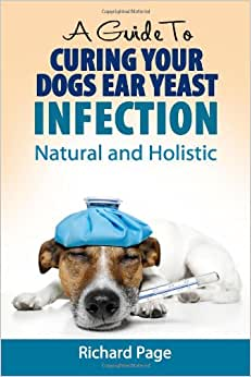Curing An Ear Infection In A Dog