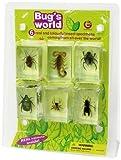 Geoworld Bug
