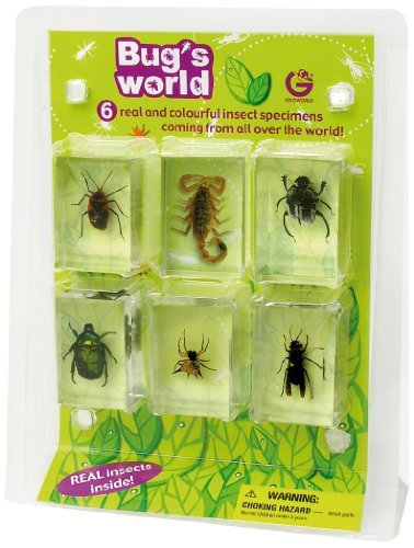 Geoworld Bug'S World 6 Real Insects Toy, Kids, Play, Children