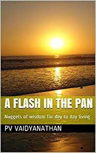 A Flash in the pan: Nuggets of wisdom for day to day living by P. V. Vaidyanathan