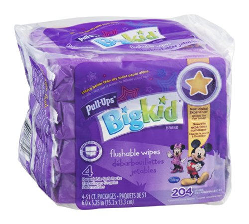 pull-ups-big-kid-flushable-wipes-204-ct-204-ct-pack-of-6