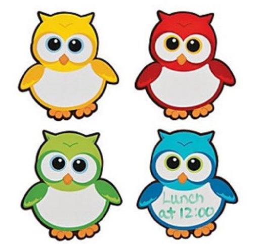 12 Small Owl Magnetic Dry Erase Boards - Owl Party Favors - 1