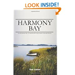 Harmony Bay: An adventurous slice of waterfront life where mystery surrounds history...
