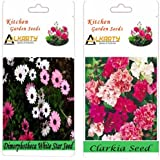 Alkarty Dimorphotheca White Star Clarkia Mixed Seeds Pack Of 20 (Winter)
