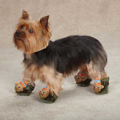 Casual Canine ZA3899 04 15 Monkey Business Slipper For Dogs, Small, Ty