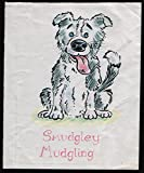 img - for The Tail of Smudgley Mudgling: Illustrated by Bruce Silverstone book / textbook / text book