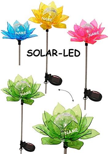4-Stck--Solarblume-Blte-Blume-BUNT-incl-Name-Solar-Leuchte-mit-LED-Licht-Garten-Wetterfest-fr-Auen-Solarbetrieben-Figur-Gartendeko-Solarleuchte-Laterne-Gartenleuchte-Auenbeleuchtung-Solarleuchten-Deko