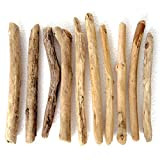 流木素材S-SS-L 棒状特小型サイズ10本 インテリア 送料無料返金保証 長良川流木専門店「流木と流木」