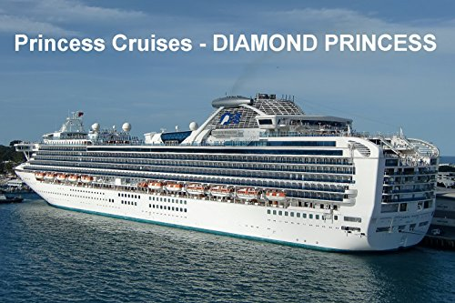 cruise-ship-fridge-magnet-diamond-princess-princess-cruises