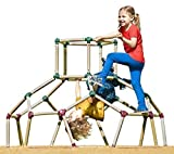 Lil Monkey Playground Jungle Gym Monkey Bar Climbing Frame Play Structure Dome Climber Set and App