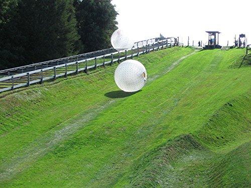 Qiyun New 3M Diameter Zorb Inflatable Zorb Ball Zorbing Human Hamster Ball PVC 1 0mm