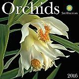 Orchids 2016 Wall Calendar