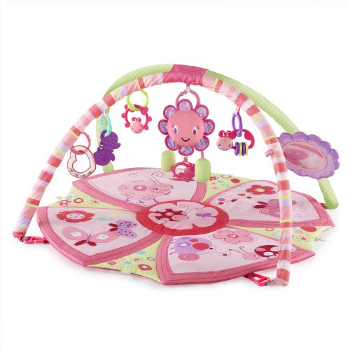 Bright Starts Giggle Garden Activity Gym, Pretty in Pink - 1