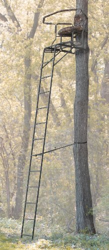 Guide Gear 16' Wraparound 2 - man Ladder Stand
