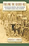 Fueling the Gilded Age: Railroads, Miners, and Disorder in Pennsylvania Coal Country (Culture, Labor, History)