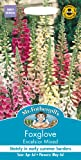 Mr.Fothergill's Seeds Foxglove Excelsior Mixed フォックスグローブ(ジギタリス)・エクセルシオール・ミックス