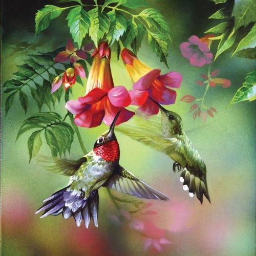 Summer Hummer a 1000-Piece Hummingbird Jigsaw Puzzle