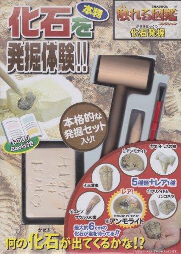 本物化石を発掘体験!! [触れる図鑑コレクション/化石発掘] ([教育用品])