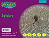 Gill Munton Read Write Inc. Phonics: Non-fiction Set 2 (Purple): Spiders