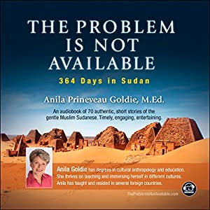 The Problem Is Not Available: 364 Days in Sudan Audiobook