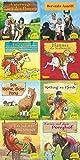 Pixi-Bundle 8er Serie 198: Große Pferde