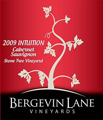 "2009 Bergevin Lane Vineyards ""Intuition"" Reserve Cabernet Sauvignon 750 Ml"