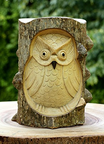 Unique Hand Carved Wooden Owl From Crocodile Wood Decor Statue Art