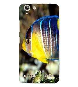 LENOVO VIBE K5 PLUS FISH Back Cover by PRINTSWAG