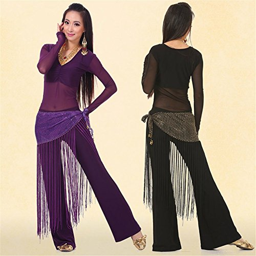 SNW Professional Belly Dance Costume Set 3 Pcs Belly Dance Long Sleeves Top/Pants/Hip Scarf Wrap Belt Dance Costumes Stage Performance Party Dance Clothing Sportswear Dance Costumes Practice Costume as a gift