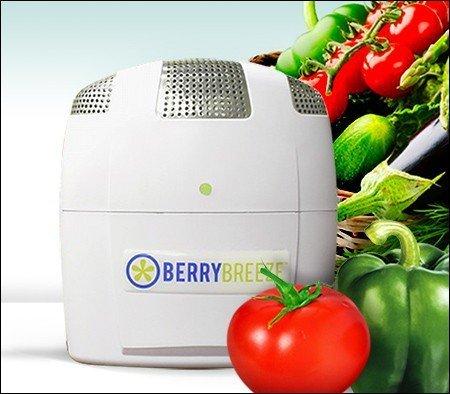 Berry Breeze Activated Oxygen Refrigerator Deodorizer-2017 Model by BerryBreeze