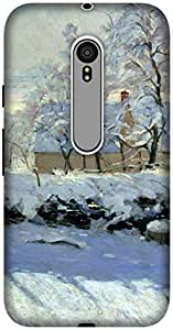 The Racoon Grip printed designer hard back mobile phone case cover for Motorola Moto G 3rd Gen. (The Magpie)