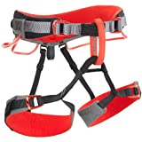 Black Diamond Momentum climbing belt DS, L-XL grey/red climbing belt