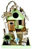 Love Nest Beautiful Chic Garden Bird House in 3 Designs with Feeder Box