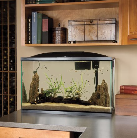 Bio wheel 37 gallon kit w led light prices aquariums for 37 gallon fish tank