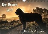 Der Briard 2017 - Ein echter Charmeur (Wandkalender 2017 DIN A4 quer): 12 ausgewählte Fotografien des Herzensbrechers lassen Sie an seinem Leben ... (Monatskalender, 14 Seiten) (CALVENDO Tiere)