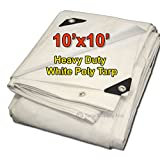 Tarpsupply 10'x10' Heavy Duty 12 By 12 Cross Weave 10 Mil White Poly Tarp with Grommets Approx Every 18 Inches All Around, Corner Solid Plastic Bar Reinforcement for Extra Strength (Color: White, Tamaño: 10 Feet x 10 Feet)