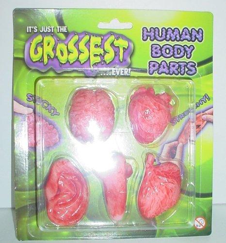 Parti del corpo umano mai più grossa - Silver Pocket Toy - riempitore di Jersey - scherzi HL67